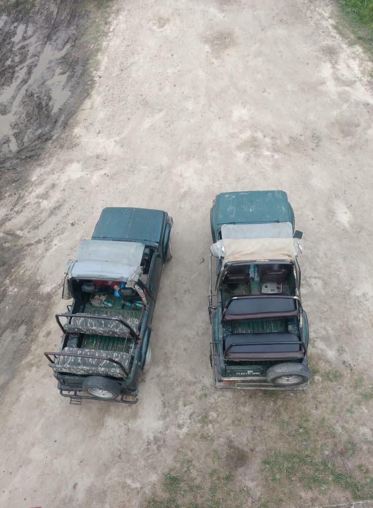 jeep junglee safari kaziranga national park