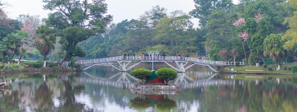 Shillong Cherry Blossom Festival